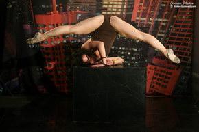 hot sex dancers